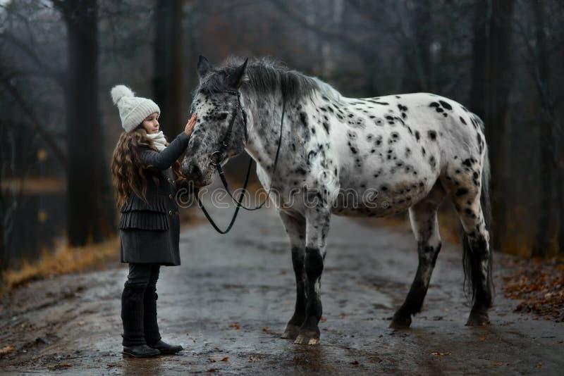 Retrato de la chica joven con el caballo del Appaloosa y los perros del dalmatian imagen de archivo libre de regalías
