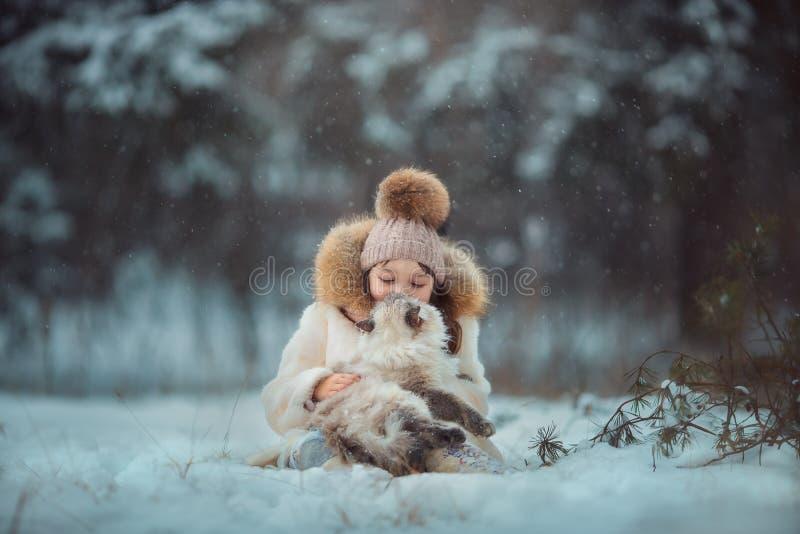 Retrato de la chica joven con el gato foto de archivo