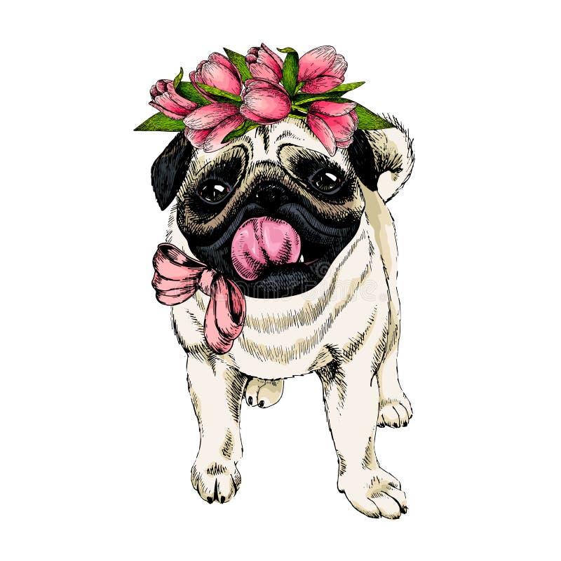 Retrato de la corona del tulipán del perro del barro amasado que lleva Primavera agradable Ejemplo coloreado dibujado mano del ve ilustración del vector