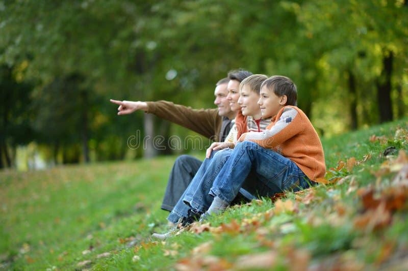 Retrato de la familia de cuatro miembros en parque del otoño imagen de archivo libre de regalías