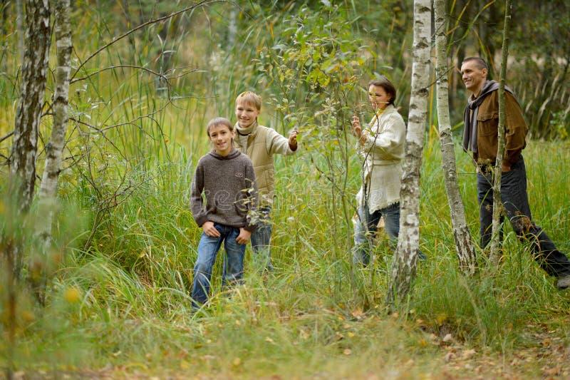Retrato de la familia de cuatro miembros en parque imagenes de archivo
