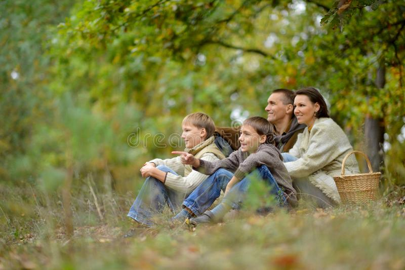 Retrato de la familia de cuatro miembros en parque foto de archivo libre de regalías