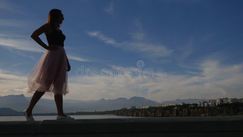 Retrato de la forma de vida de la moda de la mujer joven en la falda de Tulle imagen de archivo libre de regalías