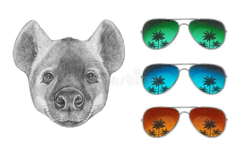 Retrato de la hiena con las gafas de sol ilustración del vector
