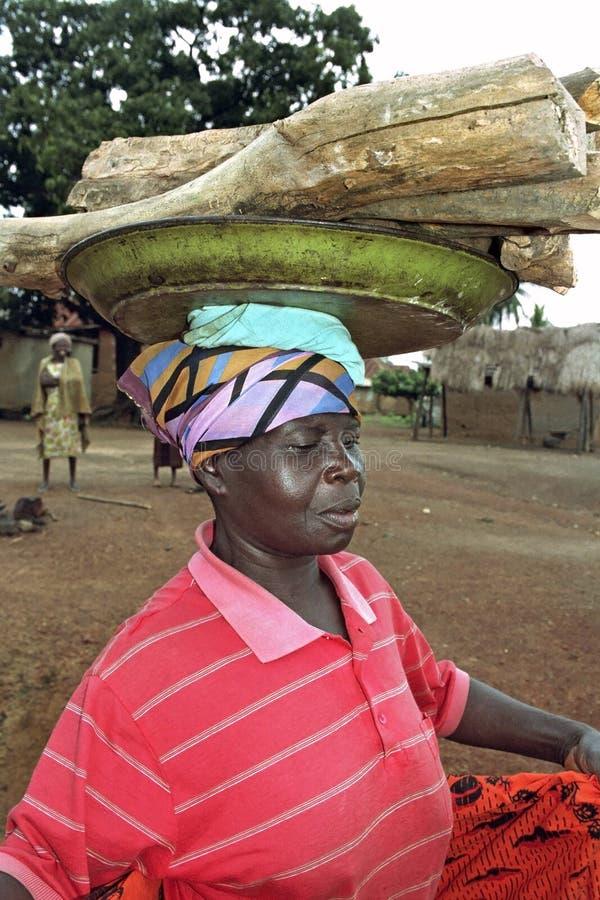 Retrato de la leña que lleva de la mujer ghanesa fotografía de archivo libre de regalías