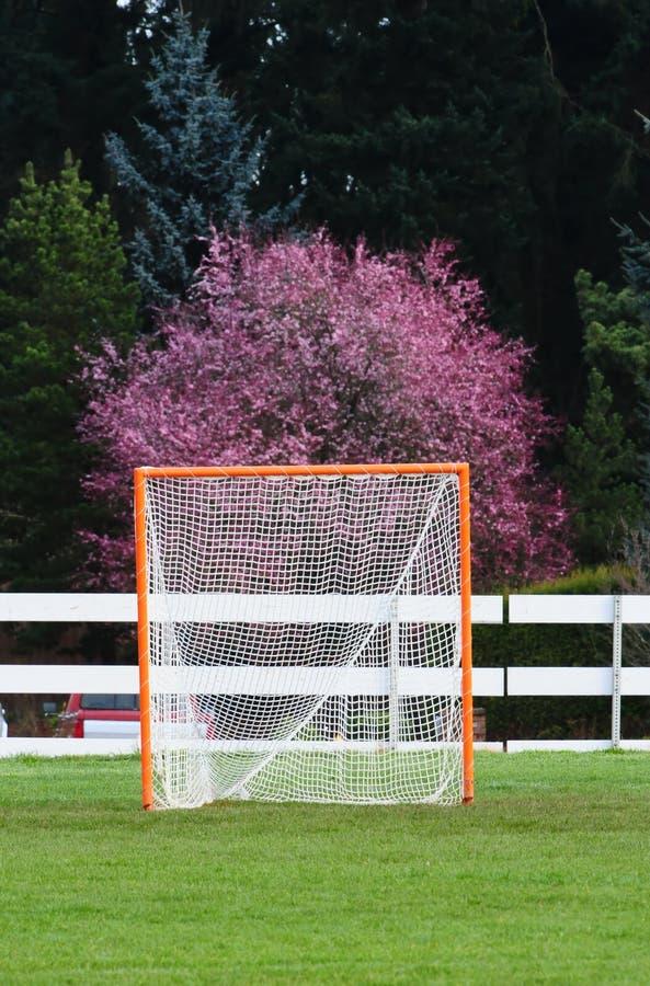 Retrato de la meta del lacrosse fotografía de archivo libre de regalías