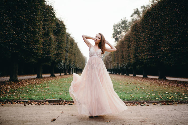 Retrato de la morenita hermosa en vestido largo de la rosa de la gasa imagen de archivo libre de regalías
