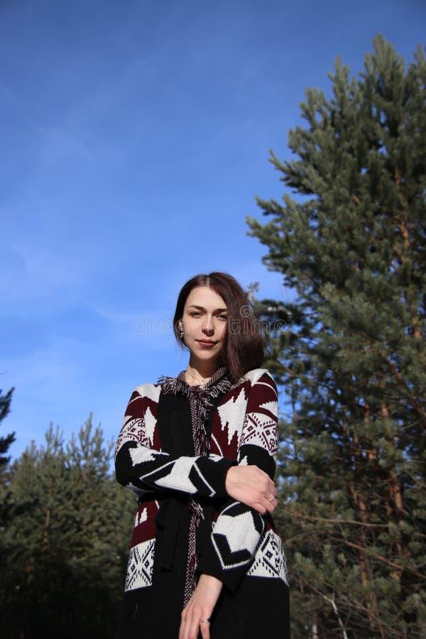 Retrato de la muchacha atractiva hermosa joven con el pelo marrón largo y los ojos azules Ella lleva la ropa ornamental étnica de imágenes de archivo libres de regalías