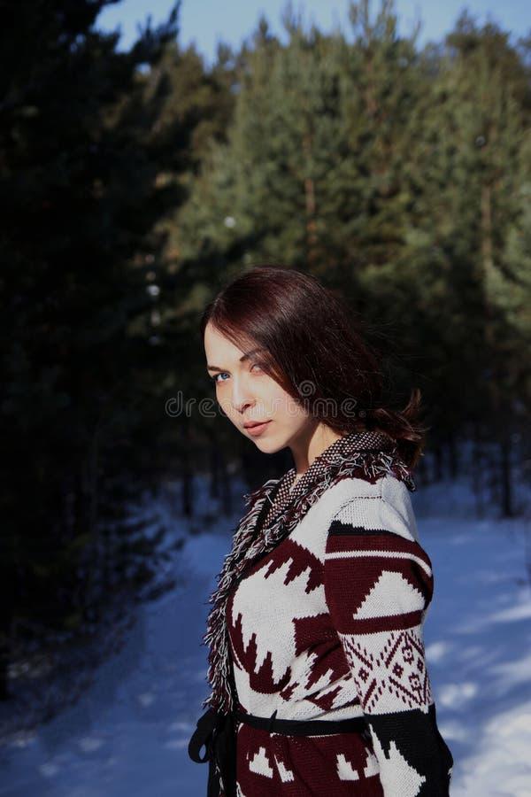 Retrato de la muchacha atractiva hermosa joven con el pelo marrón largo y los ojos azules Ella lleva la ropa ornamental étnica de imagen de archivo
