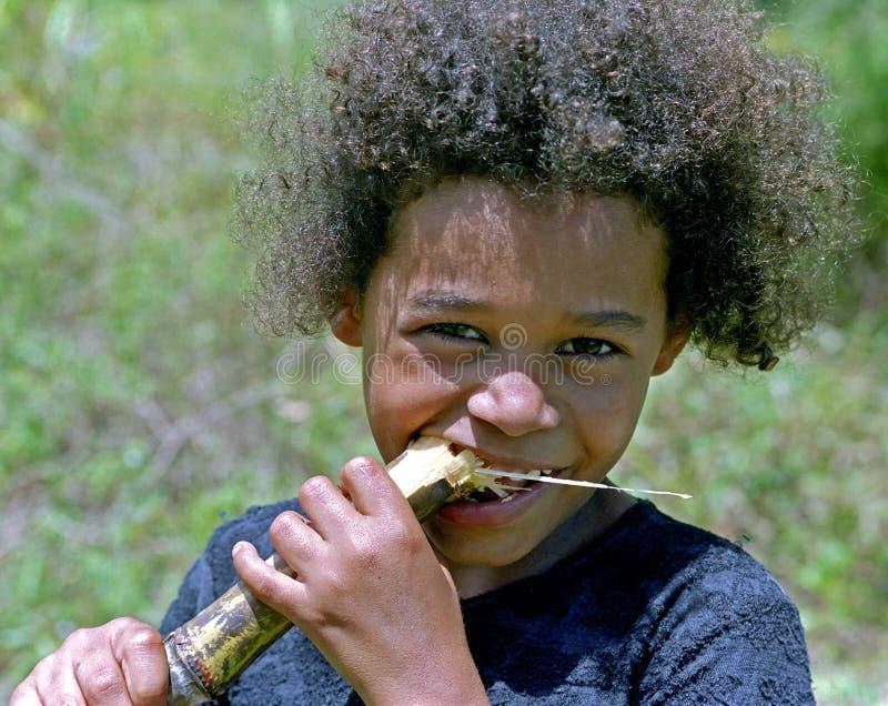 Retrato de la muchacha con la caña de azúcar del tallo, el Brasil foto de archivo libre de regalías