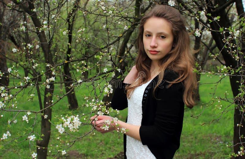 Retrato de la muchacha hermosa foto de archivo libre de regalías