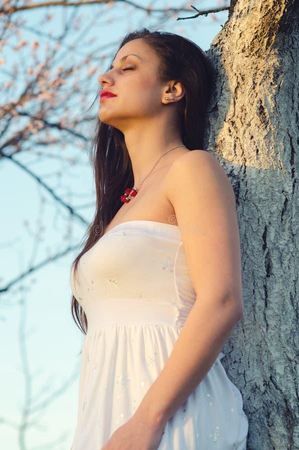 Retrato de la muchacha hermosa que se coloca en huerta de la primavera del albaricoque fotos de archivo