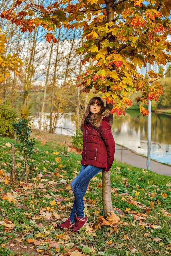 Retrato de la muchacha redheaded joven en bosque del otoño foto de archivo