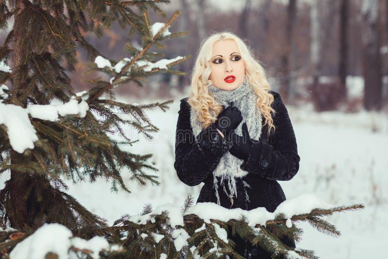 Retrato de la muchacha rubia en bosque del invierno foto de archivo libre de regalías
