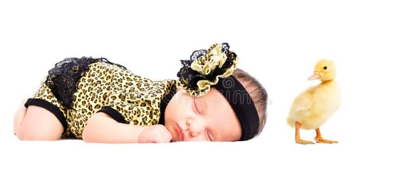 Retrato de la muchacha y del anadón recién nacidos lindos imágenes de archivo libres de regalías