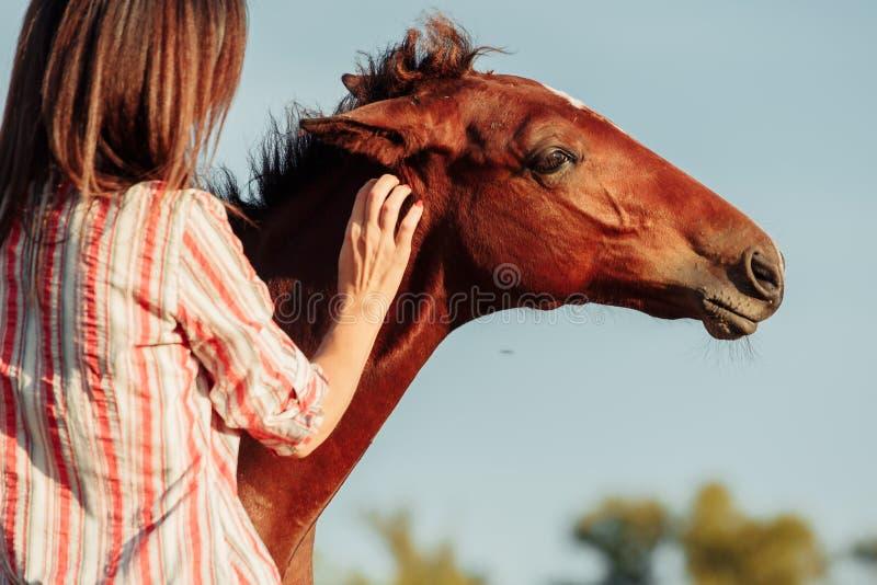 Retrato de la mujer bonita joven con un potro en la granja foto de archivo libre de regalías