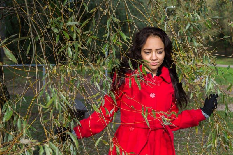Retrato de la mujer hermosa con el pelo oscuro que lleva el rojo elegante c imágenes de archivo libres de regalías