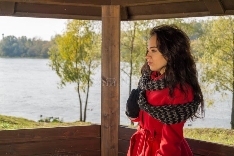 Retrato de la mujer hermosa con el pelo oscuro que lleva el rojo elegante c foto de archivo