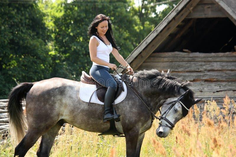 Retrato de la mujer hermosa en caballo cerca del granero imagenes de archivo