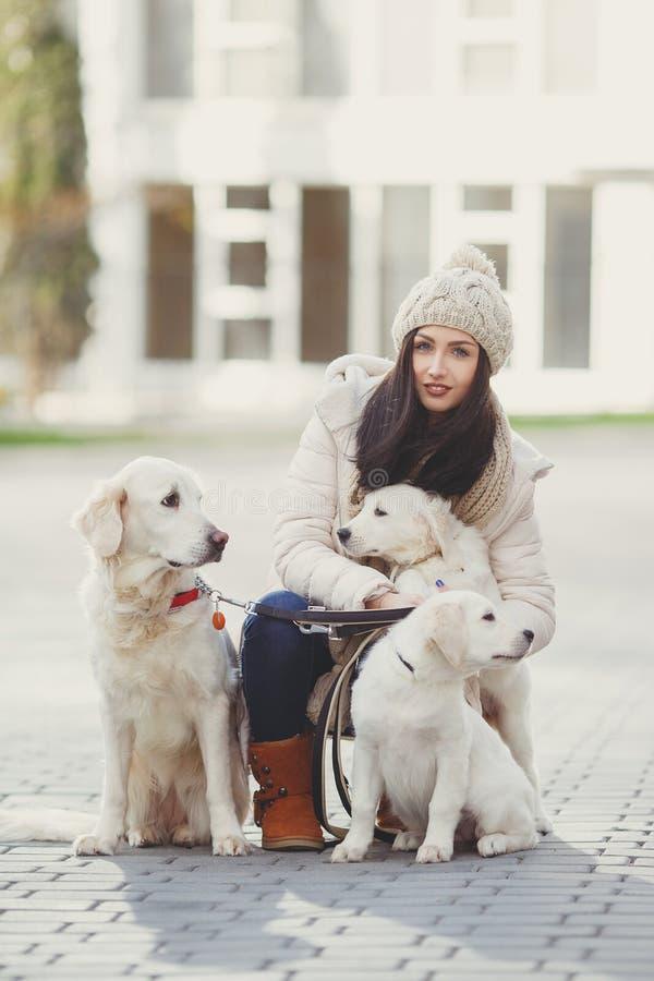 Retrato de la mujer joven con los perros preferidos imagen de archivo