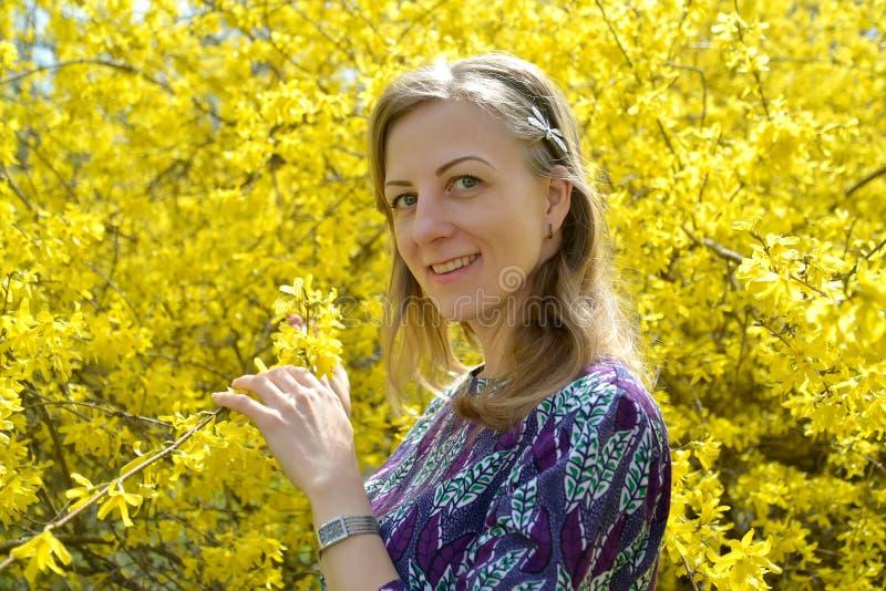 Retrato de la mujer joven contra la perspectiva de colores amarillos del forsythia imagenes de archivo