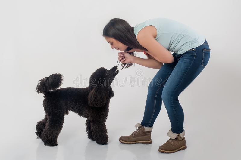Retrato de la mujer joven hermosa que juega con su perro hermoso imagenes de archivo