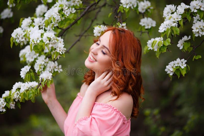 Retrato de la mujer de sueño joven en vestido rosado romántico en un jardín floreciente de la manzana imagenes de archivo