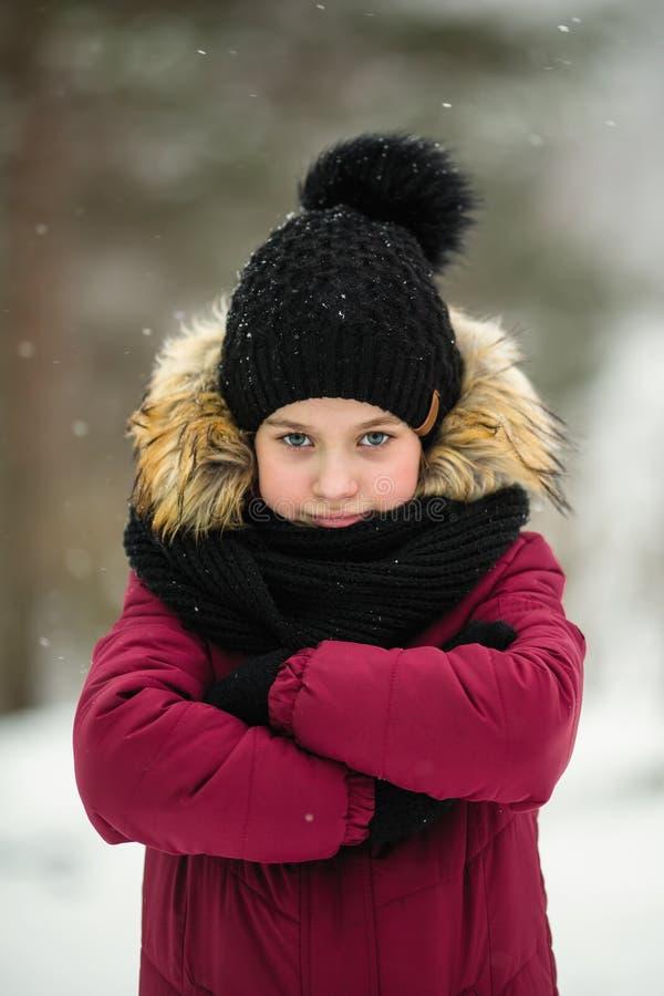 Retrato de la niña en invierno de la nieve Naturaleza foto de archivo libre de regalías