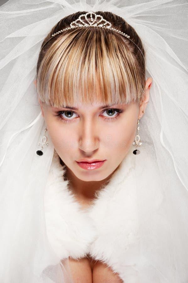 Retrato de la novia hermosa foto de archivo