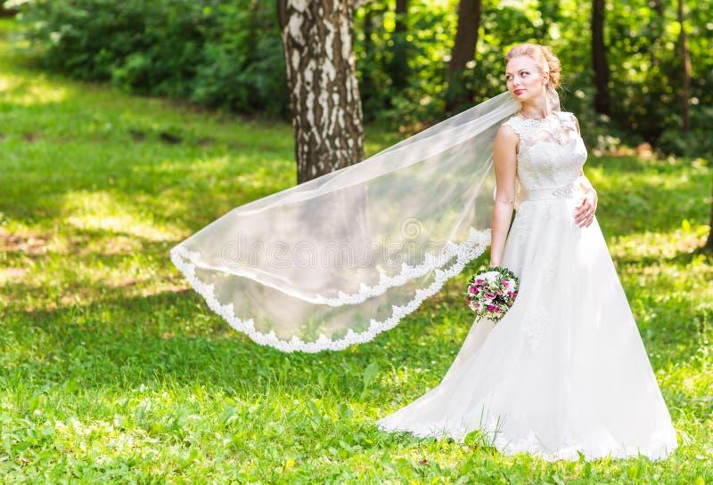 Retrato de la novia joven hermosa en vestido blanco elegante con velo largo al aire libre imagen de archivo