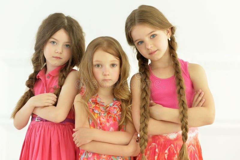 Retrato de la presentación linda de las niñas foto de archivo