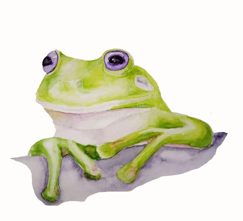 Retrato de la rana de la acuarela libre illustration