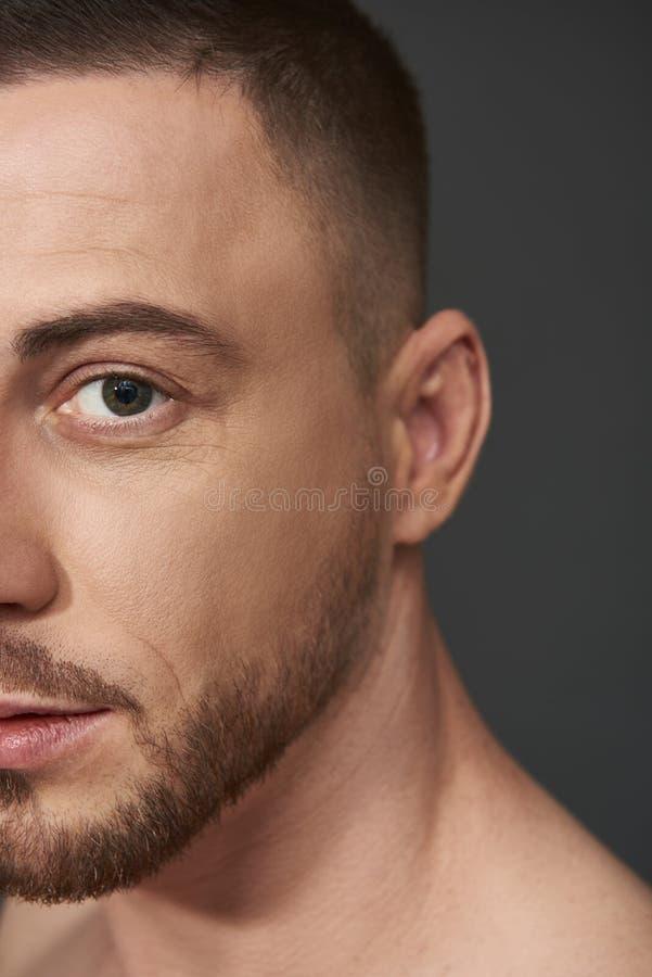 Retrato de la situaci?n barbuda hermosa del hombre joven contra fondo gris imagenes de archivo