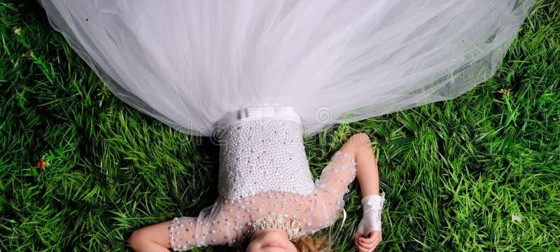 retrato de la visión superior de una chica joven bonita que se relaja en una hierba fotos de archivo