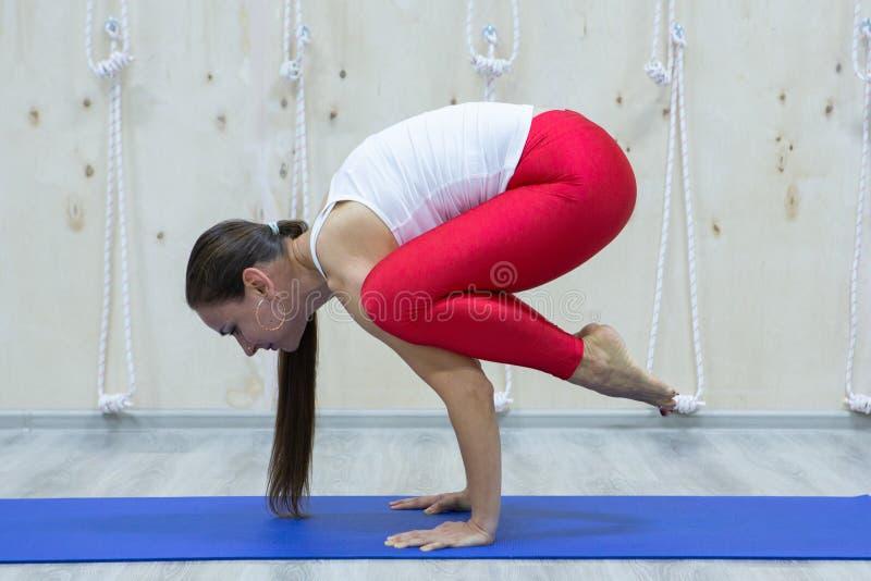 Retrato de la yoga practicante magnífica de la mujer joven interior imagen de archivo libre de regalías