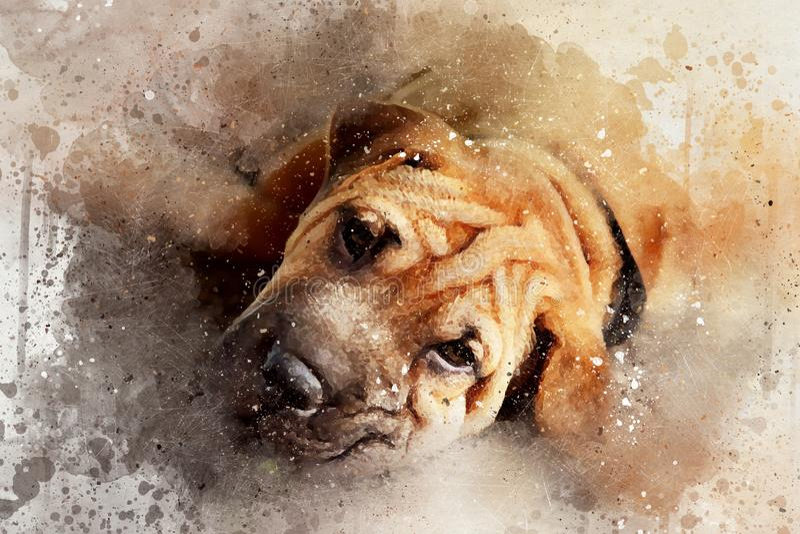 Retrato de las técnicas mixtas de un perro joven del pei de Shar ilustración del vector