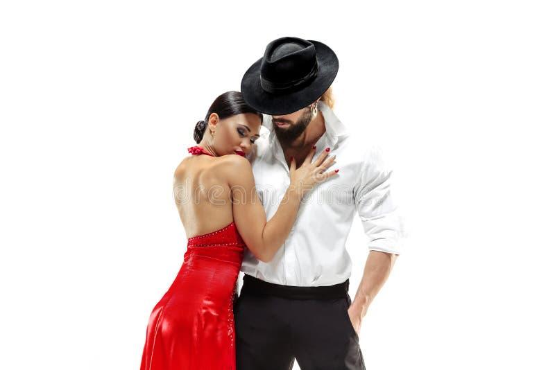 Retrato de los bailarines jovenes del tango de la elegancia Aislado sobre el fondo blanco imagenes de archivo