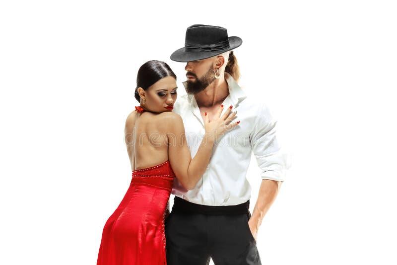 Retrato de los bailarines jovenes del tango de la elegancia Aislado sobre el fondo blanco fotografía de archivo