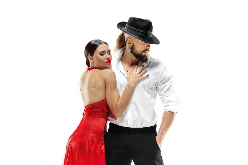 Retrato de los bailarines jovenes del tango de la elegancia Aislado sobre el fondo blanco imagen de archivo