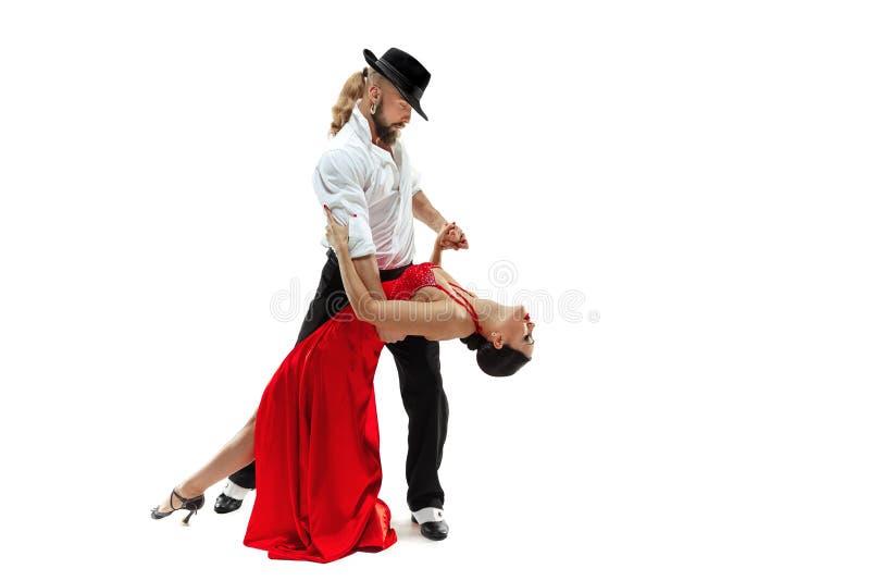 Retrato de los bailarines jovenes del tango de la elegancia Sobre el fondo blanco imagenes de archivo