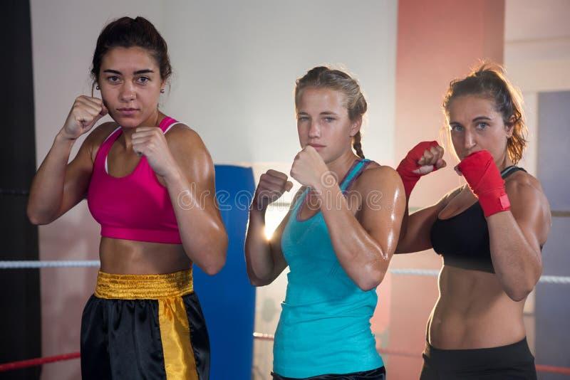 Retrato de los boxeadores de sexo femenino confiados que se colocan en postura que lucha fotos de archivo libres de regalías