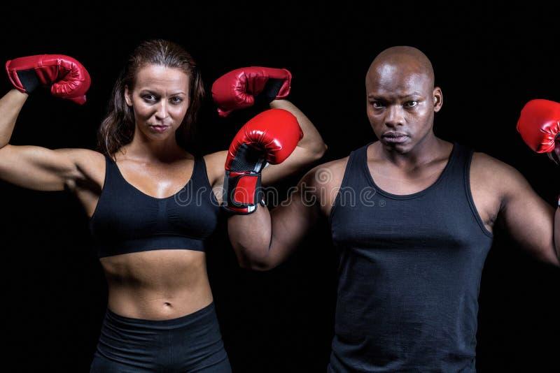 Retrato de los boxeadores que doblan los músculos fotos de archivo