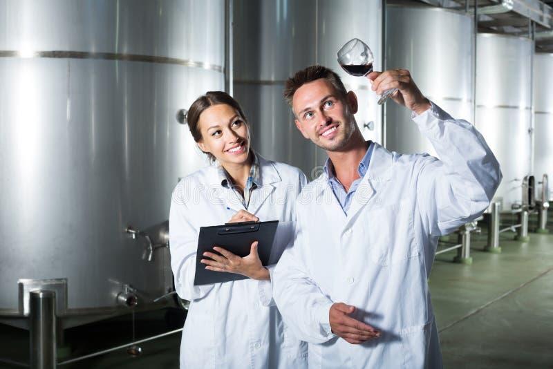 Retrato de los dos expertos alegres que examinan el vino imagen de archivo