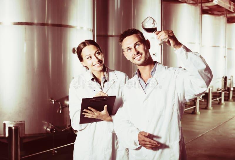Retrato de los dos expertos alegres que examinan el vino fotos de archivo libres de regalías