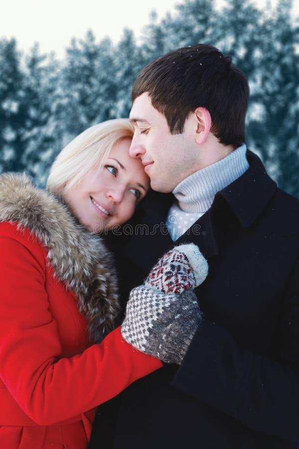 Retrato de los pares jovenes cariñosos felices que abrazan en día de invierno imagen de archivo