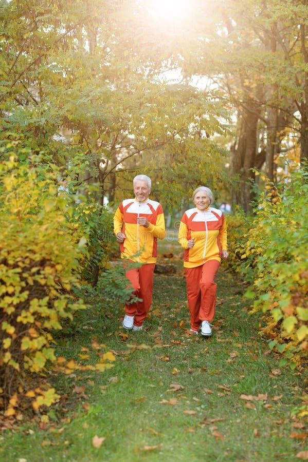 Retrato de los pares mayores aptos felices que activan imagen de archivo