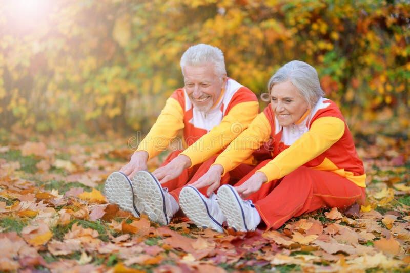 Retrato de los pares mayores aptos que ejercitan en parque del oto?o fotografía de archivo