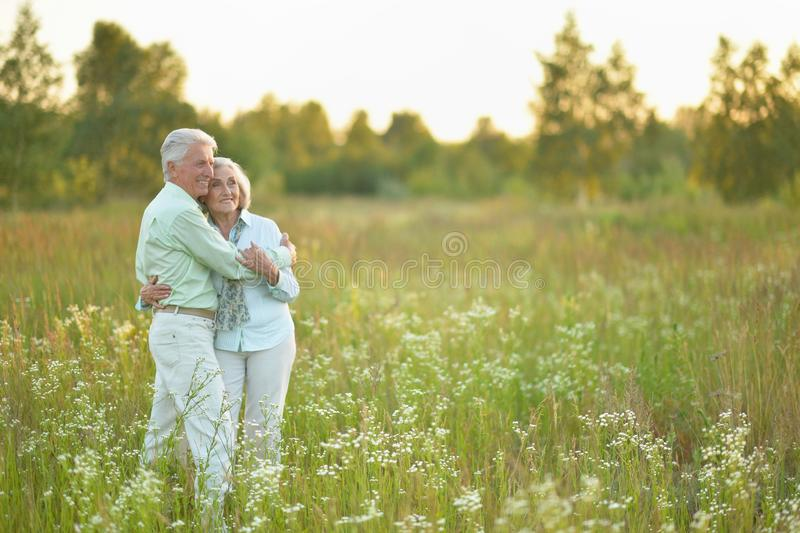 Retrato de los pares mayores hermosos que se relajan y que presentan en el parque del verano fotos de archivo libres de regalías