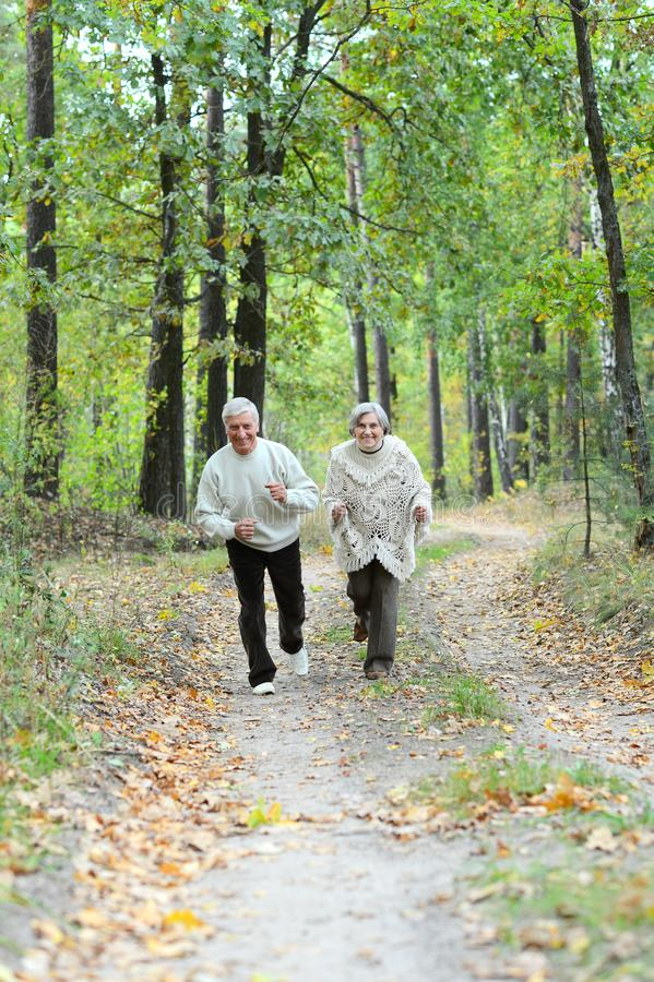 Retrato de los pares mayores que caminan en bosque del oto?o imagen de archivo libre de regalías