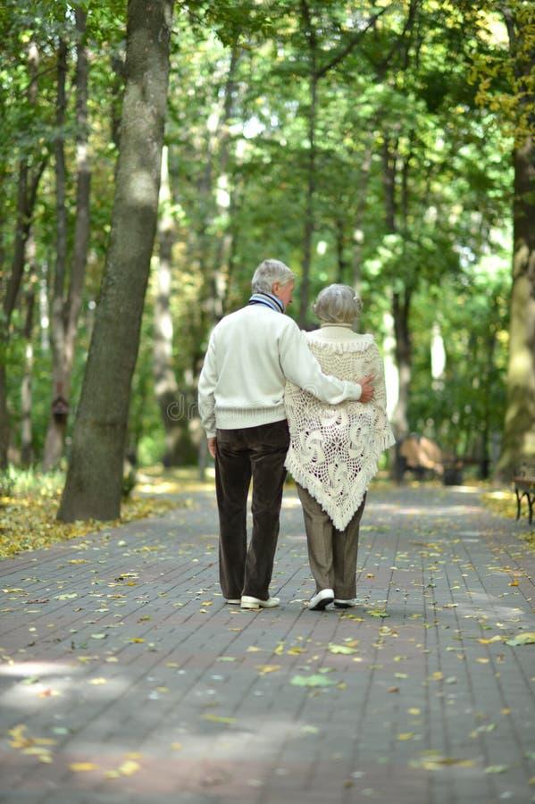 Retrato de los pares mayores que caminan en bosque del oto?o imagen de archivo